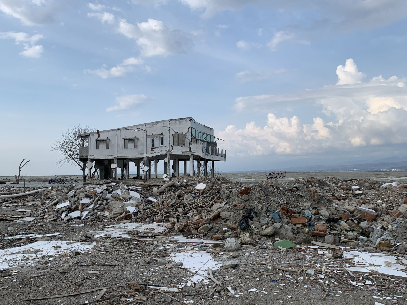 Compound disasters caused by strong earthquakes (tsunamis, soil liquefaction, etc.)